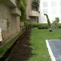 Diseño de Jardineria