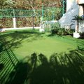 Green Golf 3