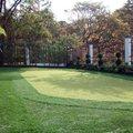 Green Golf 6