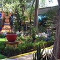 Hda Cortes Coyoacan 6