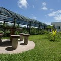 Instalaciones para Crianza de Bulldogs - Zar Bulldogs - Cancún