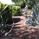 Jardineria - Servicio de mantenimiento de areas verdes
