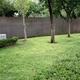 Proyecto para decoración para jardín