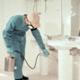 Todo Limpio Servicios: Fumigación, control de fauna nociva