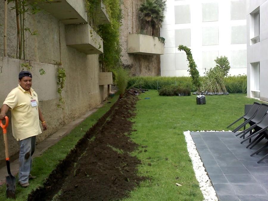 Foto dise o de jardineria de jardineria la encantada for Jardineria queretaro
