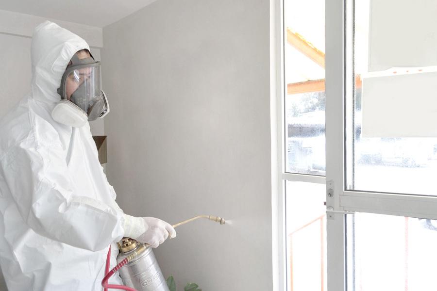 Control de plagas, desinfección y sanitización