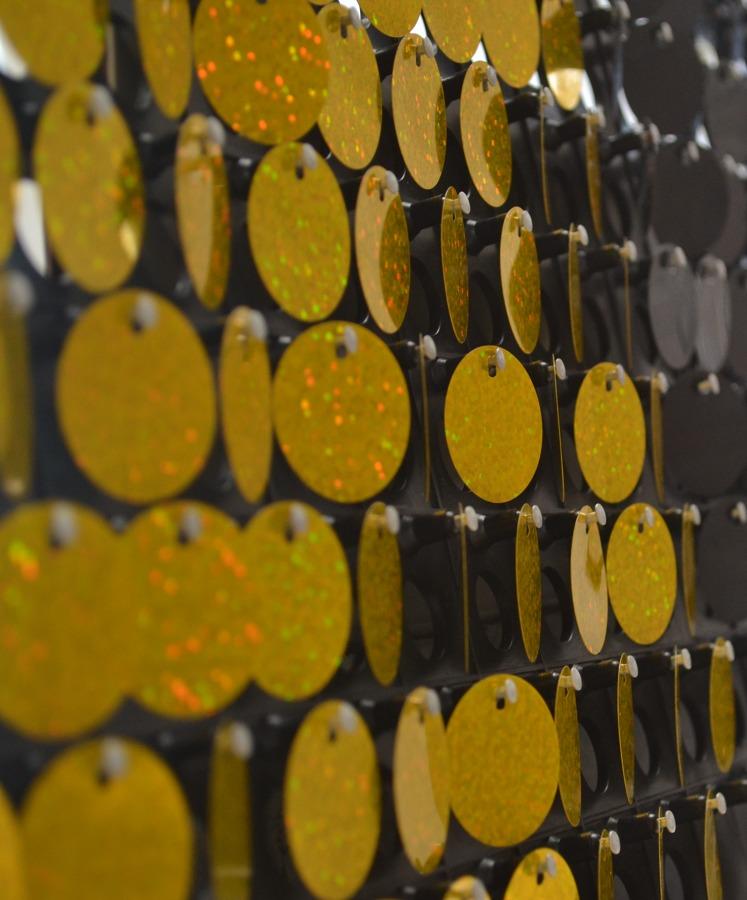 Panel 4D