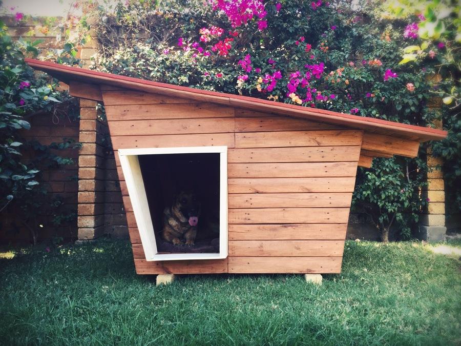 Foto casa para perro bongo de arte sano 206783 habitissimo - Como hacer una casita para perros ...