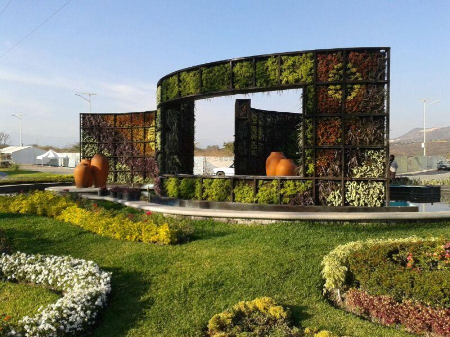Jardin vertical de suculentas