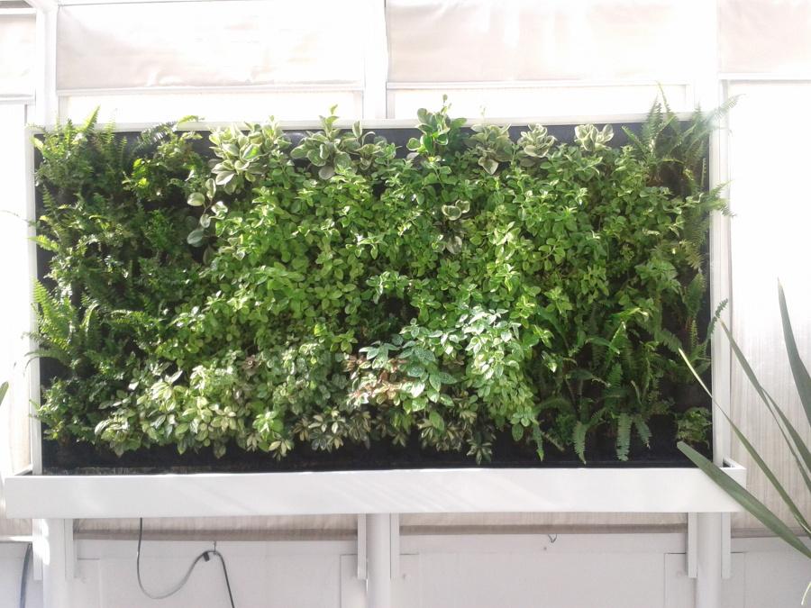 Foto jard n vertical en una terraza de centro jardinero - Jardin vertical terraza ...