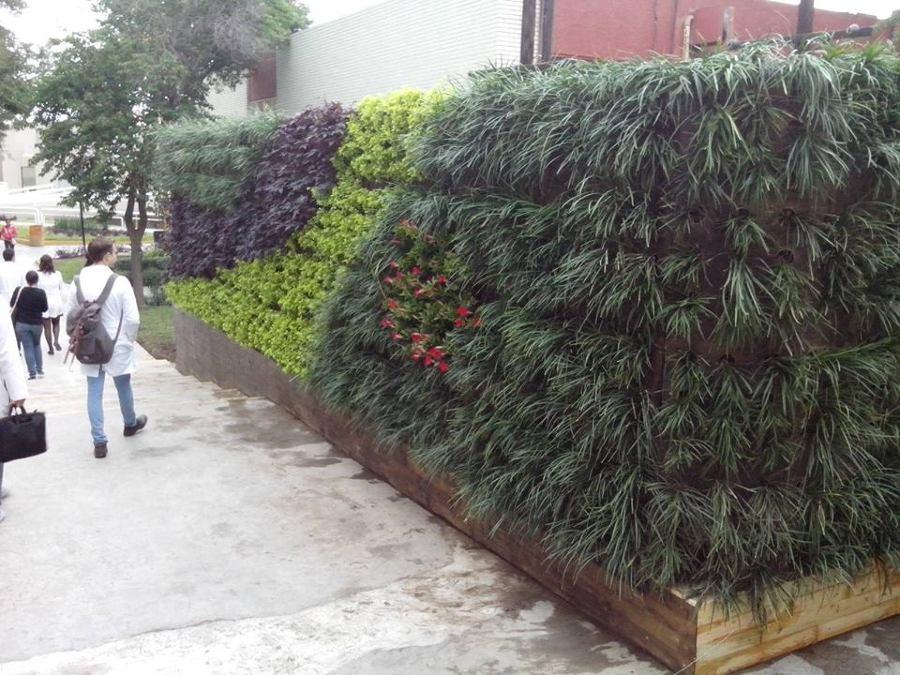 Foto jardin vertical muro verde de justino v zquez 74012 for Jardin verde
