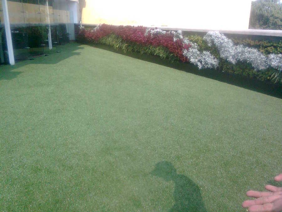 jardin vertical y pasto sintetico