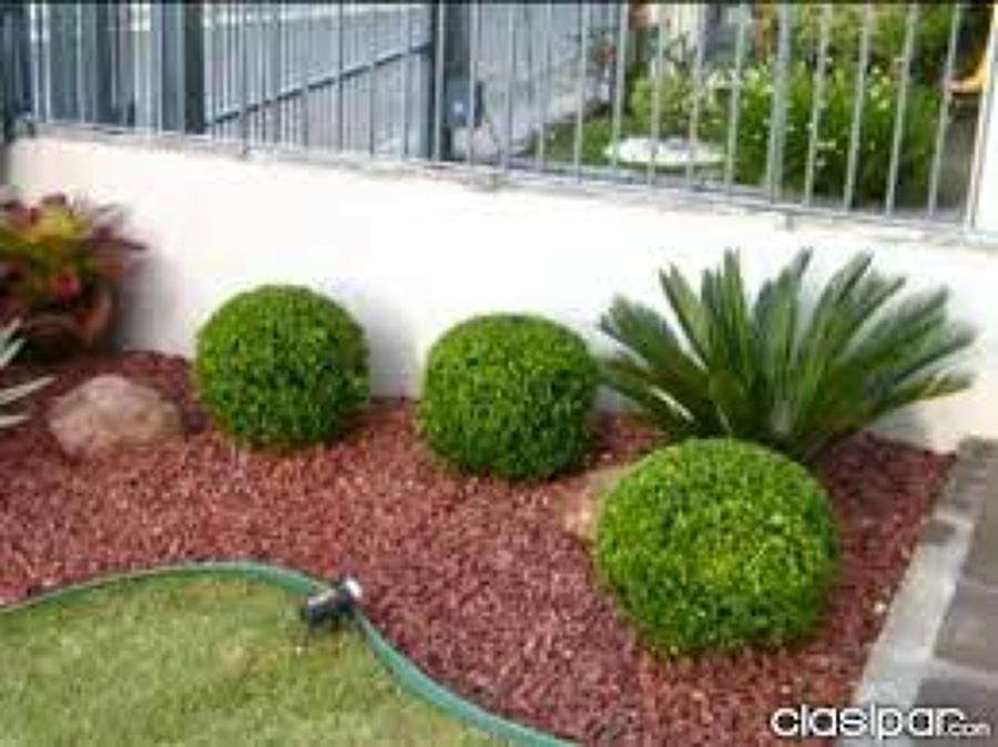 Foto jardineras de remodelacion y construccion 48457 for Jardines pequenos con jardineras