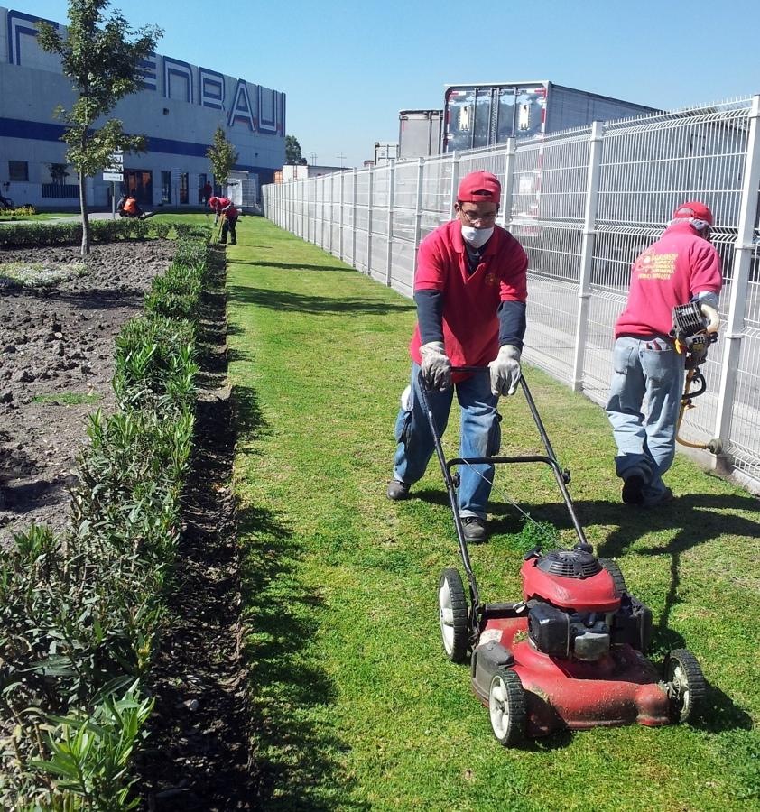Foto jardineria integral macot de servicios de limpieza for Empresas de jardineria