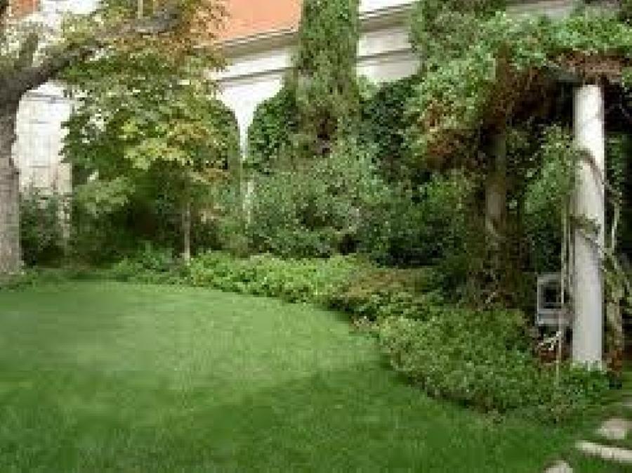 Foto jardineria de dise o construccion y remodelacion for Jardineria queretaro