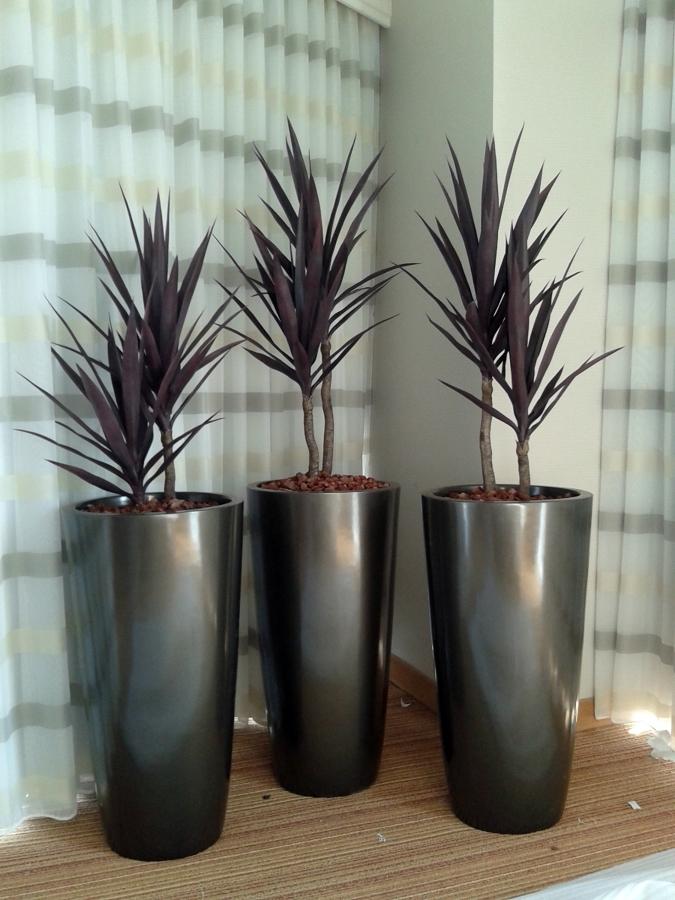 Foto macetas de fibra de vidrio de tecnogarden 2645 for Macetas de plantas para interiores