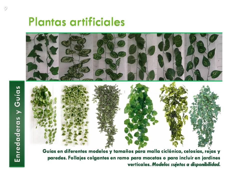 Foto muros verdes y jardines verticales de decorklass for Plantas usadas para jardines verticales