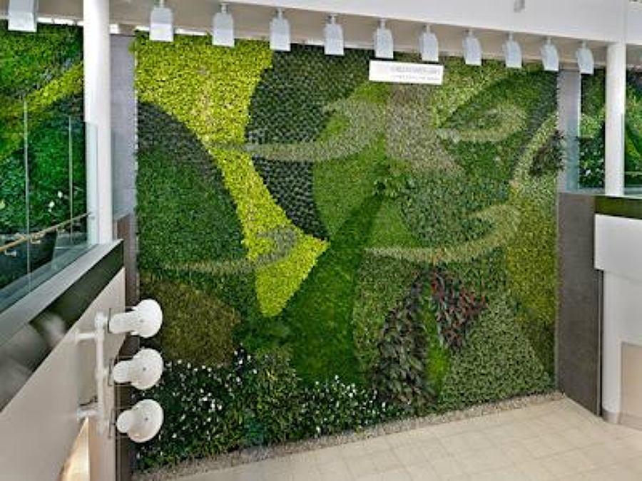 Foto muros verdes de arqco ingenieria 74990 habitissimo for Diseno de muros verdes