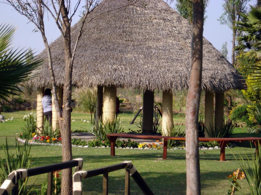 Foto palapa de abastecedora jardines xochimilco 33052 for Jardineros en xochimilco