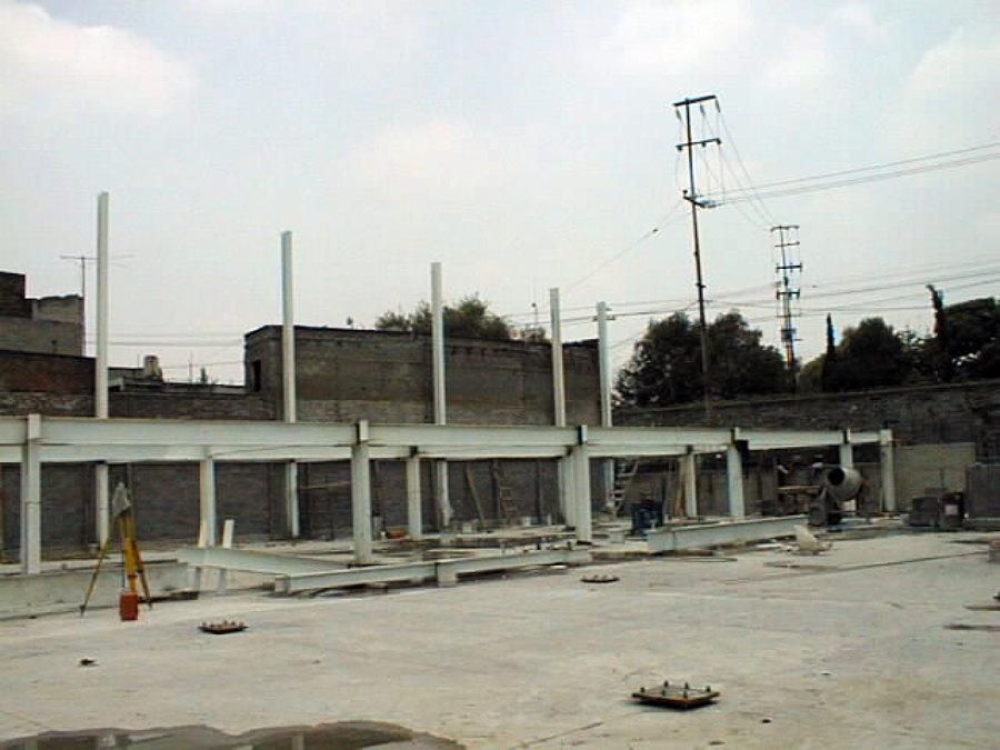 Planta de plastilina, Distrito Federal