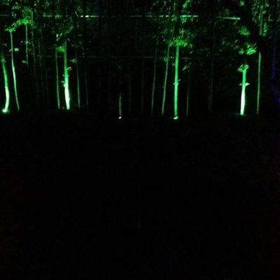 ILUMINACIÓN RESIDENCIAL LED