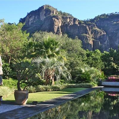 Alberca, Diseño de paisaje y jardinería