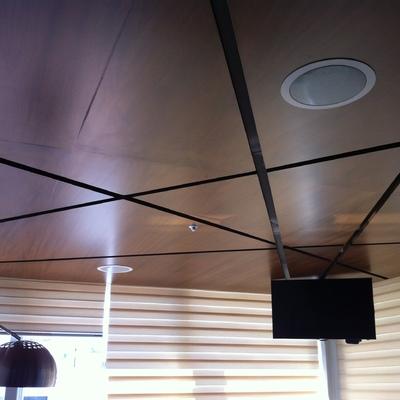 Bocina de Plafon en techo de Deck