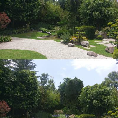 propuesta de diseño para mejora de jardín