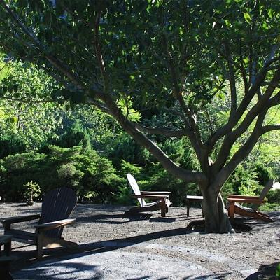 Diseño de paisaje y jardinería