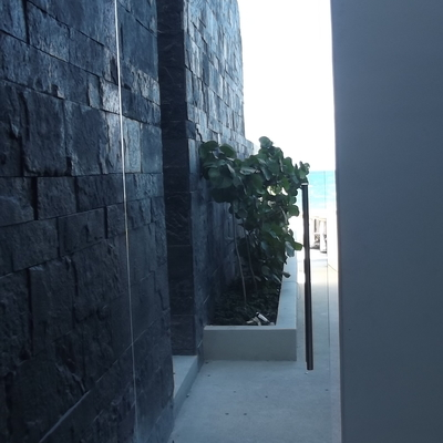 Hotel Gran Hyatt Playa Del Carmen