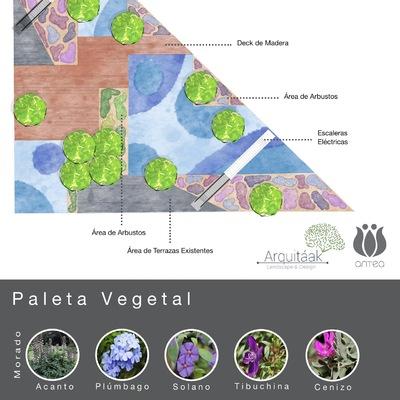 Conceptual de paleta vegetal en Plaza comercial Antea