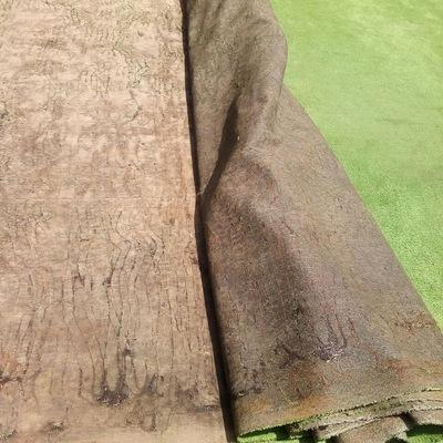 Retiro de alfombra para instalación de piso epóxico