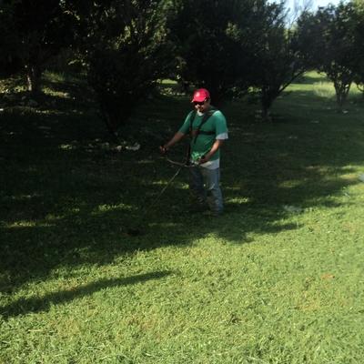 Fumigación y mantenimiento de áreas verdes
