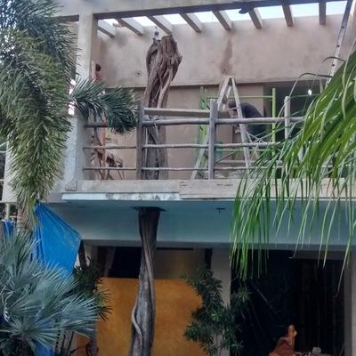 Residencia con arbol incrustado en Playa del Carmen