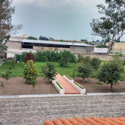 Jardinería en Cortijo San Agustin
