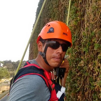 Trabajo vertical en muro verde