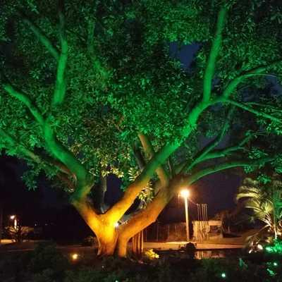 Instalación de Luminarias Led RGB en Jardín