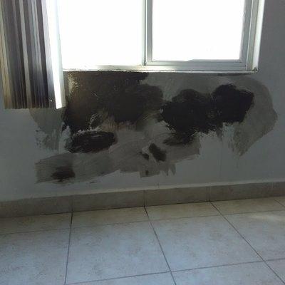 Reparación de salitre en pared