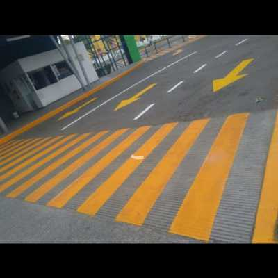 Pasos peatonales