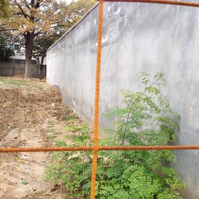 Problemas de humedad en pared externa Foto antes