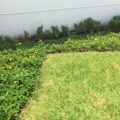 Jardín Providencia