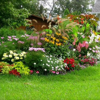jardinera arbustos