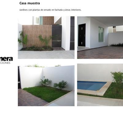 Jardínes con pasto, plantas d eornato y sistema de riego