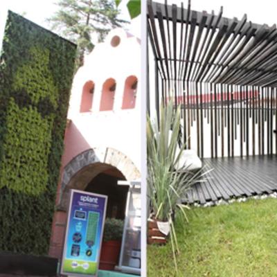 Muro verde y azoteas verdes