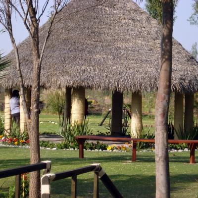 Abastecedora jardines xochimilco xochimilco for Jardin xochimilco