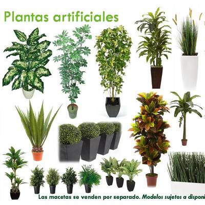 Decorklass plantas artificiales benito ju rez for Plantas ornamentales artificiales
