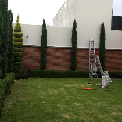 Mantenimiento Integral de Jardín