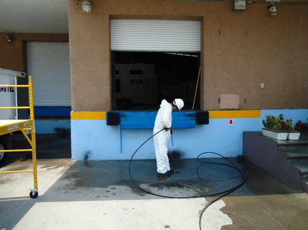 Foto limpieza profunda de i e home solution 126839 - Limpieza profunda casa ...