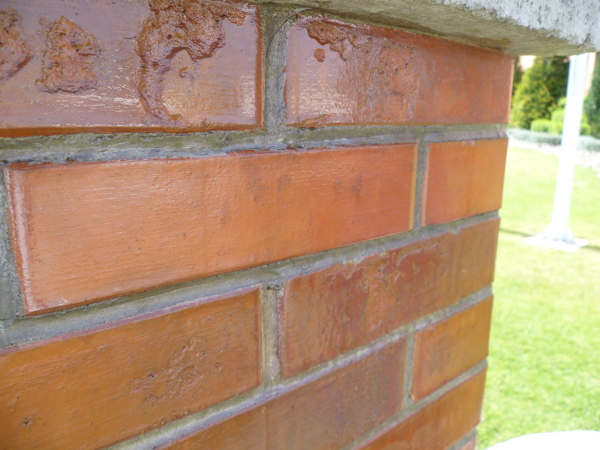 Foto muro en jard n de recubrimientos de ixtlahuaca for Jardin en muro