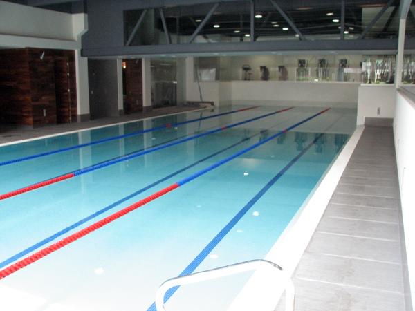 Foto remodelacion piscina semiolimpica mexico df de for Alberca semiolimpica